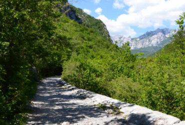 utrka-blue-paklenica-trail