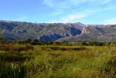 utrka-red-paklenica-trail